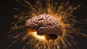 scosse elettriche apprendimento